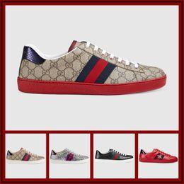 Argentina Marca Moda hombre mujer zapatos de marca de lujo Glitter Web sneaker con tachuelas raya con zapatos de diseñador de plata brillante de calidad superior Tamaño 38-44 cheap shiny glitter shoes Suministro