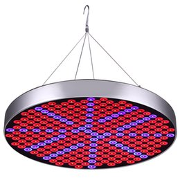 Wholesale Grow Indoor Hydroponics - 50W LED Plant Grow Lights Shengsite UFO 250 LEDs Indoor Plants Growing Light Bulbs with Red Blue Spectrum Hydroponics Plant Hanging Kit