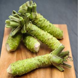 Wholesale Vegetables Japanese - wasabi seed Japanese horseradish seed vegetable bonsai plant DIY home garden 100 particles bag