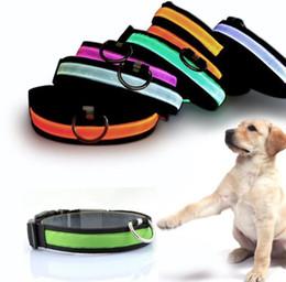 5 colori notturni di sicurezza LED collare di cane in nylon USB ricaricabile collare per cani da compagnia lampeggiante collare leggero regolabile taglia piccola medio grande da
