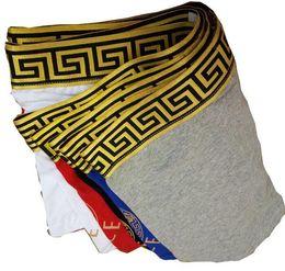 Mejor marca pc online-vender mejor marca bragas sexy para hombre ropa interior sólida hombres modal boxer corto masculino Cueca 6 piezas de lujo diseño de encaje underpant