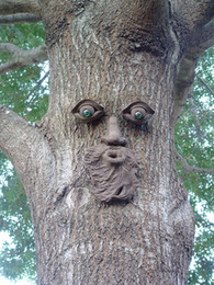 Wholesale Garden Cement - Garden Decoration ,Tree Face ,Cement ,Craft ,Garden ,Tree ,Big Tree ,Bird Feeder