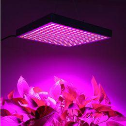 Wholesale Led Plant Grow Light 15w - Led Grow Lamp 225 LED Hydroponic Plant Grow Light Panel Red Blue 15W LED Plant Grow Lights 900lm 225 LEDs Panel Lights 110-220V