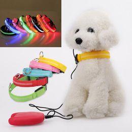 guinzagli collari di cani svegli Sconti Cute LED Dog Collare incandescente USB ricaricabile Nottilucenti Pet Belt Notte Sicurezza Lampeggiante Glow Pet Guinzagli Cani Accessori trazione
