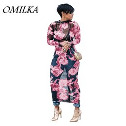 Wholesale Sexy Mesh Club Dresses - OMILKA 2018 Spring Women Long Sleeve O Neck Printed Mesh Hollow Out Dress Sexy Pink Blue Purple Plus Size Club Party Beach Dress