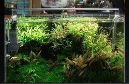 Wholesale Dimmable Led Aquarium - Dimmable Led fish tank aquario lamp Designed for Aquatic plants Aquarium accessories for 30cm 40cm 50cm 60cm peixes tank