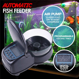 temporizador profesional Rebajas Alimentador automático de peces alimentador de alarma Dispensador de alimentos reloj digital de peces programable de alimentación temporizador del tanque del acuario