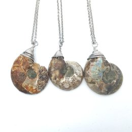 Wholesale Wholesale Ammonite Fossils - Gemstone Ammonite Fossil Shell Specimen Pendant Necklace Wire Wrapped Gem Healing Ocean Jasper Charm Necklace Gift Jewelry