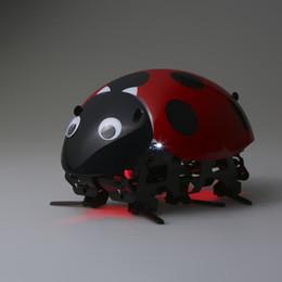 insetos robôs Desconto Brinquedos Robô inteligente Educacional Engraçado DIY Brinquedo Inseto Controle Remoto Sem Fio RC Veículos Rastreadores de Carro