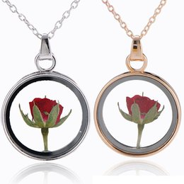 Wholesale wholesale dried roses - Dried Flowers Round Bottle Shaped Locket Glass red rose Necklace Pendant Chain Necklace Natural Dried Flower Necklace for Girls 162633