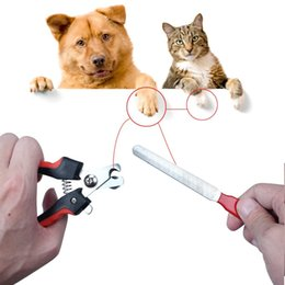 Wholesale Stainless Steel Nail Scissors - Pet Nail Clippers Cutter File For Dogs Cats Birds Guinea Pig Animal Claws Scissor Cut Set Kit