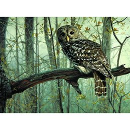 Wholesale Paint Number Kit Canvas - Frameless Picture DIY Painting By Numbers Owl Animals Acrylic Picture Kits Drawing Paint on Canvas for Home Wall Art Picture
