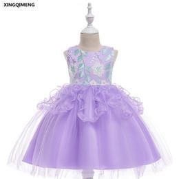 Argentina En existencia Vestido de fiesta formal de boda bordado violeta para niña de flores Dresse 3-10Y para niñas desfile de tul vestido de fiesta de niñas cheap violet gowns Suministro