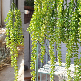 Wholesale party supplies decorations - Artificial Flowers Wall Hanging Silk Wisteria Ivy Vine Garland Wedding Party Supplies Christmas Decoration Fake Hang Baskets 6 5al jj