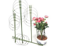 2020 pflanzkäfige Pflanzen-Stützring-Garten-Spalier-Blumen-Eisen-Stützkletterpflanze wachsen Käfig mit justierbaren Ringen rabatt pflanzkäfige