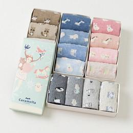 Wholesale animal print gift boxes - Gift Box Women Cute Cartoon Animal Series Cotton Socks For Ladies Autumn Winter Fashion Socks 4pairs  Box