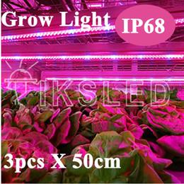 Wholesale Led Strip Lights For Aquarium - 2015 New 3pcs*0.5m Led bar rigid strip DC12V grow light for aquarium tank growing IP65 waterproof Red and blue and white