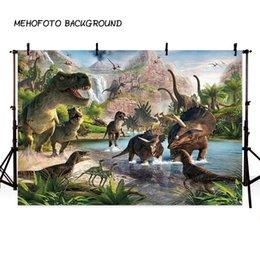 MEHOFOTO Backdrop Fotoğrafçılık Dinozor Jungle doğum günü partisi Arka planında Resimler Dekor için Fotoğraf Arka Plan için nereden yaprak yağlı boya tedarikçiler