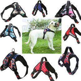 Argentina 17 Estilo Diseño Caliente Luminous Dog Harness Chaleco Collar Big Dog Cuerda Collar Correa de mano Pet Traction Rope K9 Pet Chaleco de pecho Suministro
