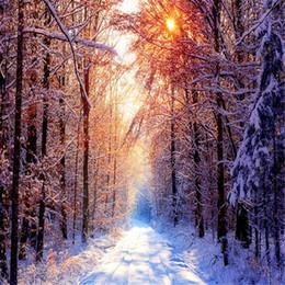 Foto szenischen hintergrund hintergrund online-Winter-szenische Fotografie-Hintergrund-starker Schnee bedeckte Landstraßen-Sonnenschein durch Waldbäume Kinderfoto-Studio-Hintergründe