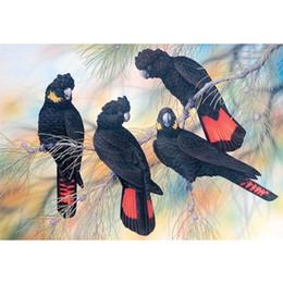 2019 telai di pittura a olio del villaggio Trapano pieno uccello piuma nera fai da te 5D tondo ricamo ricamo diamante pittura a punto croce kit mosaico disegnare decorazioni per la casa arte mestiere animale