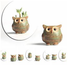 Wholesale flower pot animals - 5pcs lot Creative Ceramic Owl Shape Flower Pots for Fleshy Succulent Plant Animal Style Planter Home Garden Office Decoration DDA520