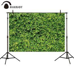 2019 cámaras del cielo al por mayor fondos de fotografía arbusto cobertura arbusto planta verde al aire libre cerca de la naturaleza de fondo de primavera para estudio fotográfico fotografía