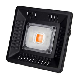 2019 luces de cultivo led led Luz de crecimiento led de mazorca Luz de crecimiento led cob cree integrada Luz de crecimiento led blanca 3590 100w 50w para interior