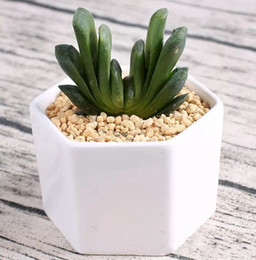 vasi bonsai in ceramica all'ingrosso Sconti vasi di bonsai in ceramica all'ingrosso mini vasi di porcellana bianca fornitori per la semina di piante da interno succulente fioriere vivaio