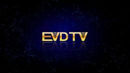 Canada EVDTV HAY IPTV France IPTV Turquie TV ARABIQUE Pays-Bas 3300 chaînes VOD EPG travaillant sur Smart tv android tv box MAG250 254 Offre