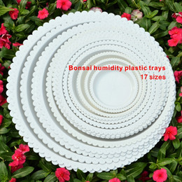 Wholesale Plastic Planting Trays Wholesale - Bonsai humidity plastic trays, All sizes,High quality resin, PP material,Suitable for all sizes of bonsai.