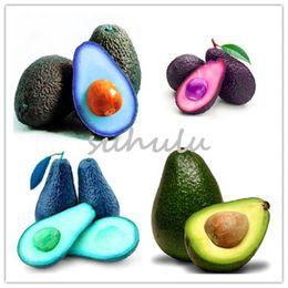 Semi di alberi crescenti online-5 pezzi di semi di avocado verde raro in vaso semi di frutta pera in crescita facile per giardino di casa vasi albero migliore regalo per i bambini così delizioso