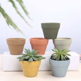 vaso da scrivania Sconti vasi di piante grasse con base in bambù decorativo semplice vasi da fiori fioriere pianta in vaso sulla decorazione della casa scrivania 449