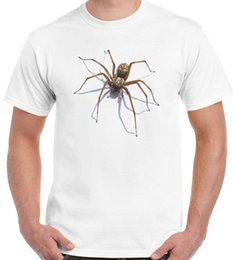 Spider Jokes Canada | Best Selling Spider Jokes from Top Sellers