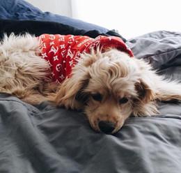 Welpen kapuzenpullis online-Hund Hoodies Modemarke Teddy Puppy Apparel Herbst Warm Outwears Schwarz Weiß Rot Pullover Pet Kleidung