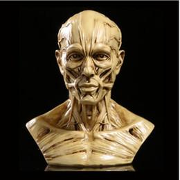 Wholesale Art Body Figure - Resin Craft Art Decoration Body Figure Statues Creative Bar Decoration Skull Statue Sculpture Art Sketch Model