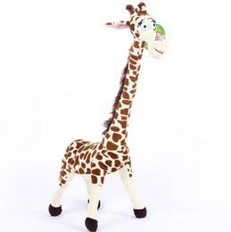Wholesale cute penguin plush toys - plush Babiqu Plush Toys Madagascar Lion Giraffe Penguin Zebra Hippo Cute Gift for Kids Boys Super Quality
