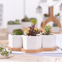 puestos de plantas modernas Rebajas Conjunto de escritorio de macetas modernas de hexágono Maceta de plantas suculentas de cerámica blanca con soporte de bambú Bonsai Planter Garden Supply Home Decor