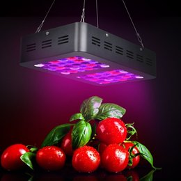 Wholesale red spectrum lighting - CrxSunny Reflector Series 600W Double Chips LED Grow Light Full Spectrum Indoor Plant Grow Lights with UV&IR Grow Lamps for Indoor Plants