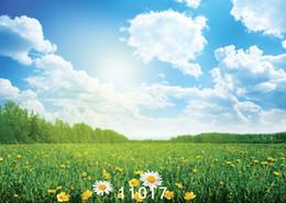 Fondo de tela de vinilo online-Fondos de la cámara 7X5ft fondos de fotografía de tela de vinilo Cielo azul y nubes blancas niños bebé telón de fondo para el estudio fotográfico 11017