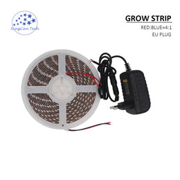 Wholesale power plant hydroponic - 5meter Led Grow Lights Strip Led plant lamps for indoor Greenhouse hydroponic systems grow tent With Power Adapter