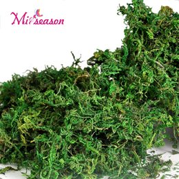 Wholesale artificial moss - 10g 20g 50g 100g bag Keep dry real green moss decorative plants vase artificial turf silk Flower accessories for flowerpot decor