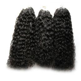 enlace de micro bucle Rebajas Extensiones de cabello Micro Loop de 300 g Cabello rizado rizado mongol 300S Cabello humano Micro-Loop Pro-bonded Micro Anillos Enlaces Extensión del cabello humano