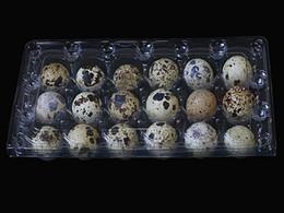 embalagens de plástico descartáveis Desconto 900 pçs / lote bandeja de ovos de codorna 18 fivela novo material bandeja de ovos caixa de plástico transparente caixa de preservação de ovo de codorna descartável