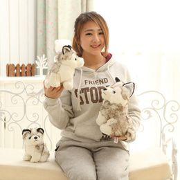 Wholesale toy huskies plush - husky dog plush animals toys stuffed animals toys hobbies 7 inch 18cm Stuffed Plus Animals GGA235 70pcs