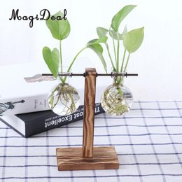 Wholesale Wholesale Wooden Flower Vases - MagiDeal Cute Vintage Wooden Stand Glass Hydroponic Flower Vase Terrarium Container Ball for Bedroom Living Room Office Gifts