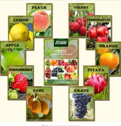 Semi gmo online-ZLKING 10 Variety 200 PZ Misto Organico Albero da Frutto Semi di Frutta Candita Non-OGM Vegetali Vegetali Semi Per La Casa Giardino