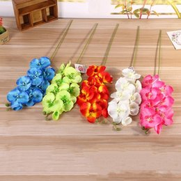 Wholesale Orchids Artificial Flower - Simulation Moth Orchid Decorative Flowers DIY Artificial Plastic Silk Flower Multi Colors Lifelike Bouquet Hot Sale 2 6lx B