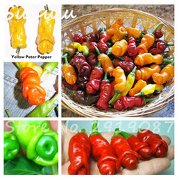 Semi di pepe rosso online-200 pc del pene Chili Red Hot Peter Pepper Seeds The World Hottest Tasty Big deliziose verdure Semi La maggior parte divertenti Peppers Bonsai piantare i semi