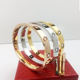Wholesale Rope Set - New style silver rose 18k gold 316L stainless steel screw bangle bracelet with screwdriver without original box